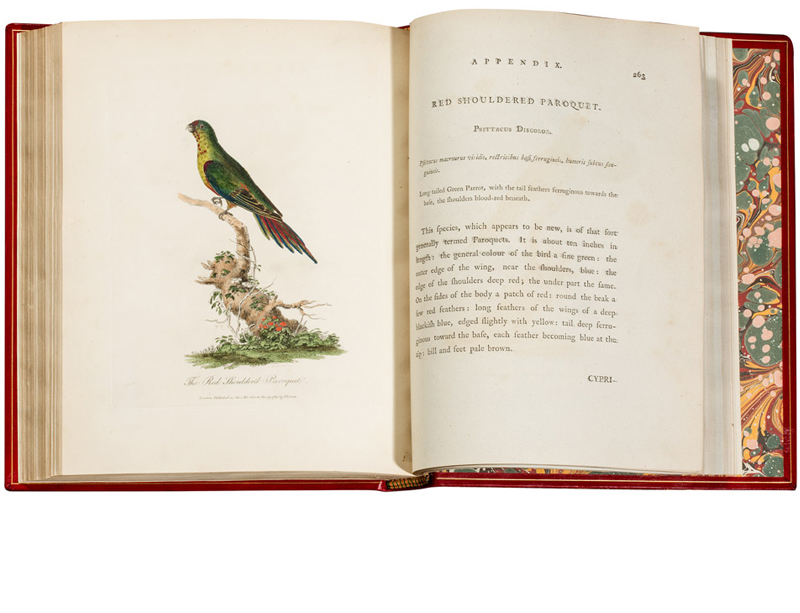 Journal of a Voyage to New South Wales with sixty-five plates of non descript animals, birds,...