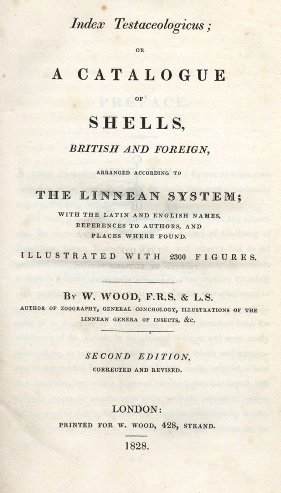 Index Testaceologicus; or A Catalogue of Shells, British and Foreign…. W. WOOD.