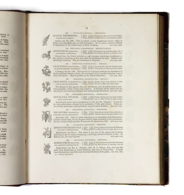 The Floral Register; containing figures and descriptions of nearly all tender and hardy plants, which have been lately introduced to, and cultivated in Great Britain. Benjamin MAUND.