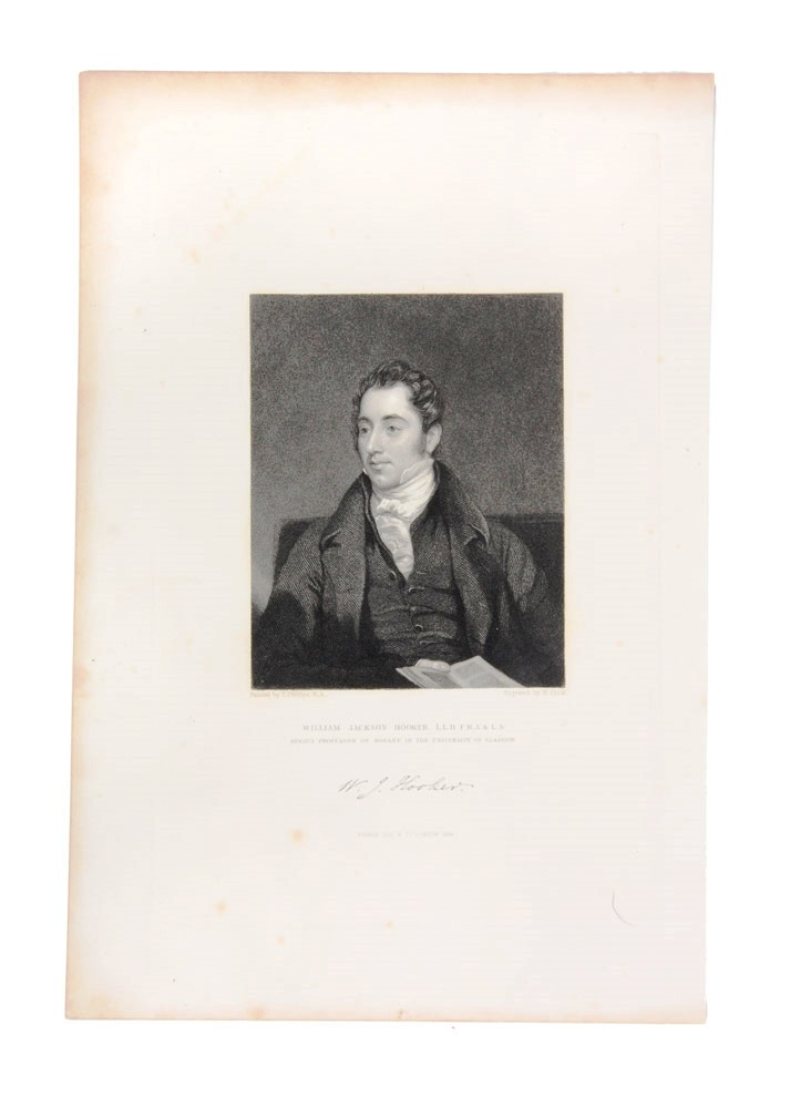 William Jackson Hooker. H. COOK, after Thomas Phillips R. A.