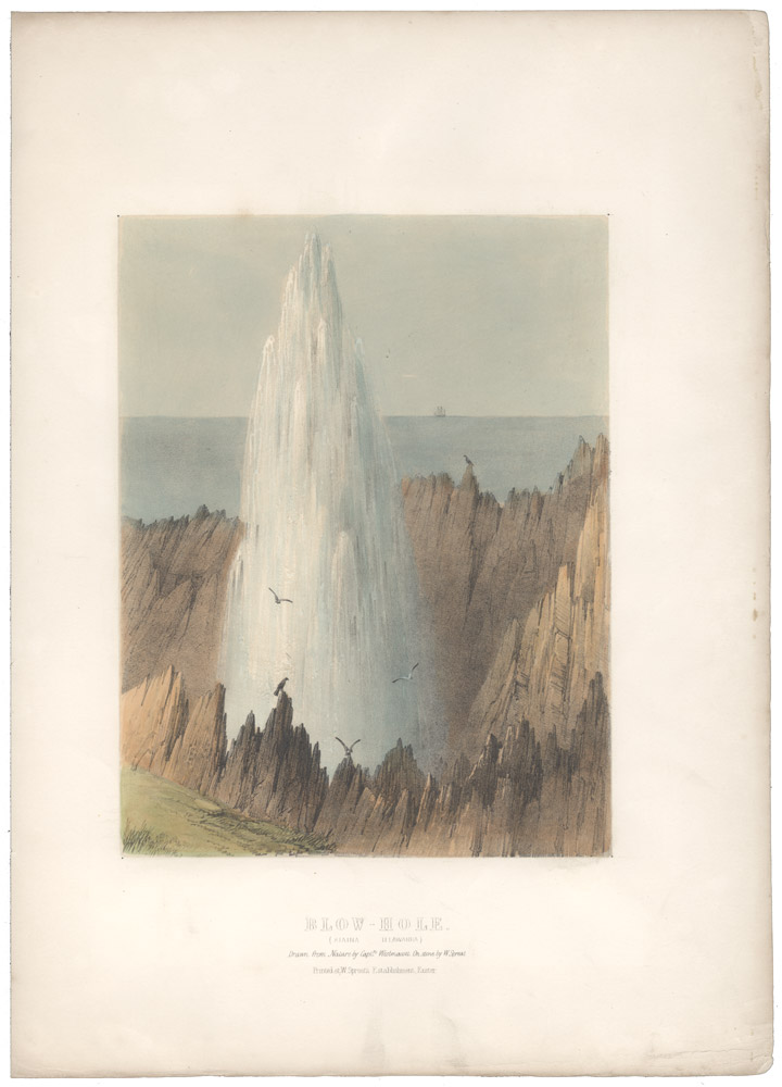 Blow-Hole (Kiana Illawarra). Drawn from nature by Capt. Westmacott. On stone by W. Spreat. Captain Robert Marsh WESTMACOTT.