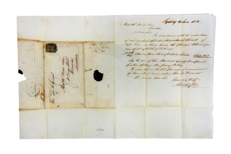 ALS concerning sale of fruit and wine from Cape Town to Hovil & Sons in London. WINE MERCHANTS, LEVICK, PIPER.