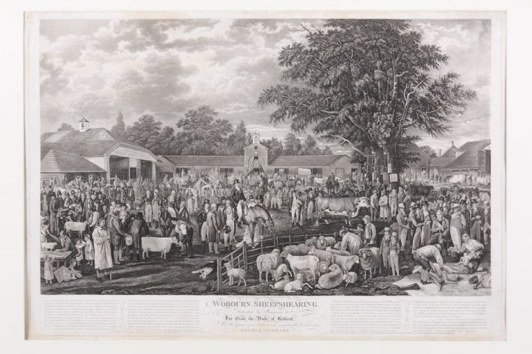 Woburn Sheepshearing. Dedicated by Permission to His Grace the Duke of Bedford. By His Grace's most obedient and very humble, George Garrard. George GARRARD.