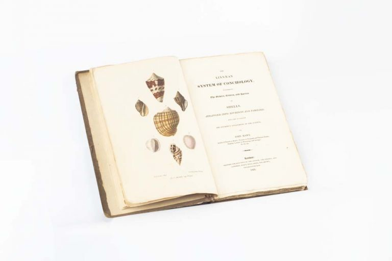 The Linnæan System of Conchology, describing the Orders, Genera, and Species of Shells, arranged into Divisions and Families: with a view to facilitate the student's attainment of the science. SHELLS, John MAWE.
