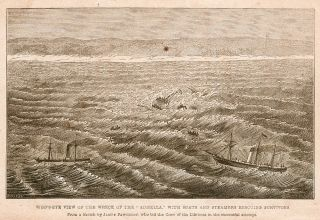 "Narrative of the Shipwreck of the ""Admella,"" Inter-Colonial Steamer, on the Southern Coast of..."