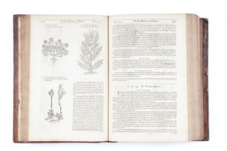 The Herball, or Generall Historie of Plantes.