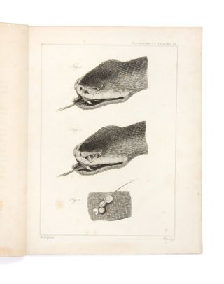 Observations on the Orifices found in certain Poisonous Snakes…. HUNTERIAN MUSEUM, Everard HOME