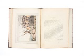 Field Sports, &c. &c. of the Native Inhabitants of New South Wales with ten plates by the Author....