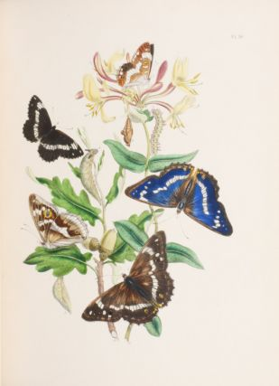 British Moths and their transformations [with] British Butterflies and their transformations.