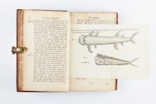 A Voyage Round the World. Containing an Account of Captain Dampier's Expedition into the...